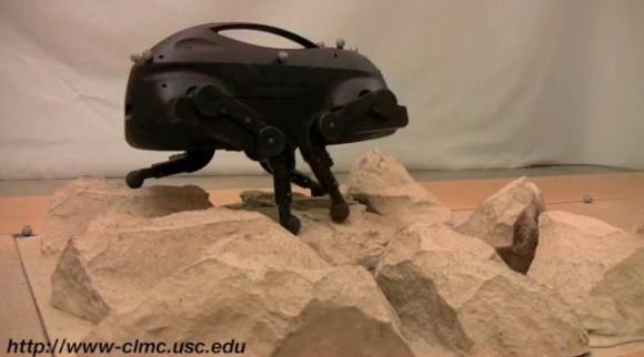 usc-robot-dog-580x322